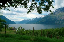 Lofthus, Ullensvang, fjord, Hardanger